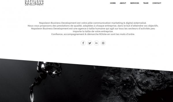 Napoleon Business Development
